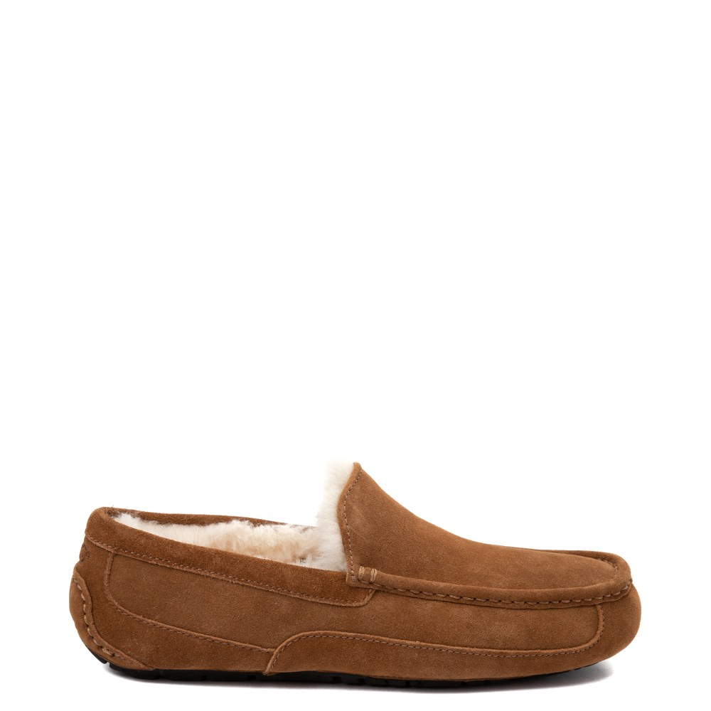 Mens UGG® Ascot Slip On Casual Shoe